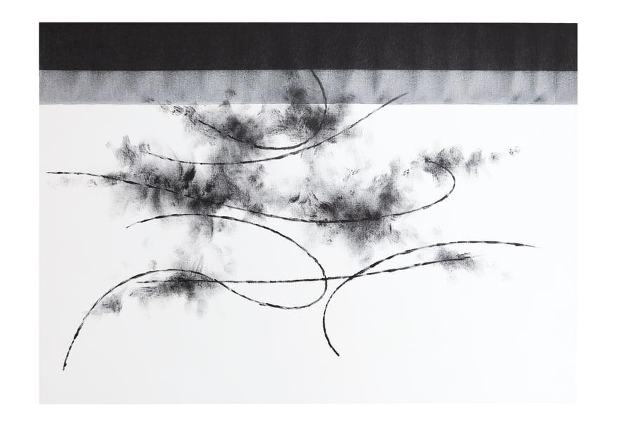 Koji Yamamoto, Pino Nero, 2016