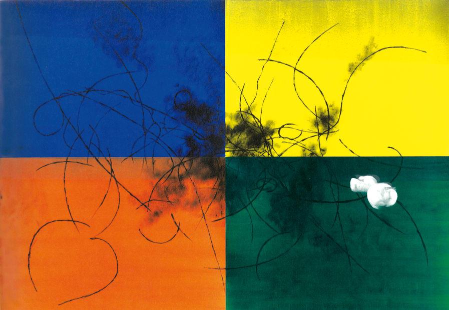Koji Yamamoto, Un'Altra Natura, 2014