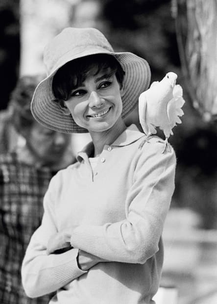 Terry O'Neill, Audrey Hepburn with Dove, South of France, 1966 (view 2)