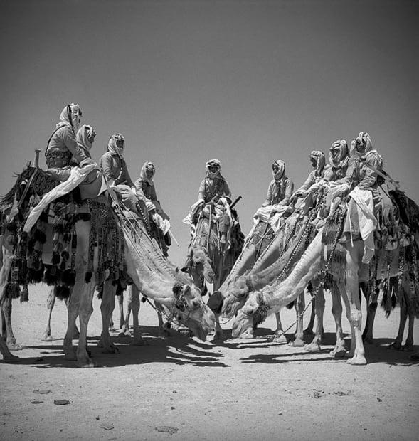 George Rodger, Arab Legion Desert Patrol. Soldiers from the desert patrol on their camels about 100 km from Amman, Transjordan, Fort Mafrak, 1941.