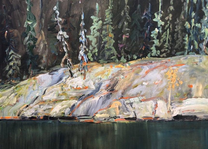 Dazzling Rocks and Dark Forest, 2019