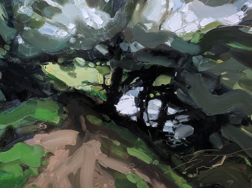 Dane's Brook, Exmoor, 2018