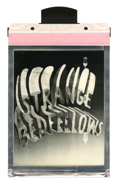 Corey Escoto, Strange Bedfellows, 2016