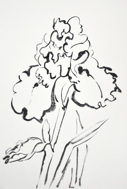 Iris [2], 1989