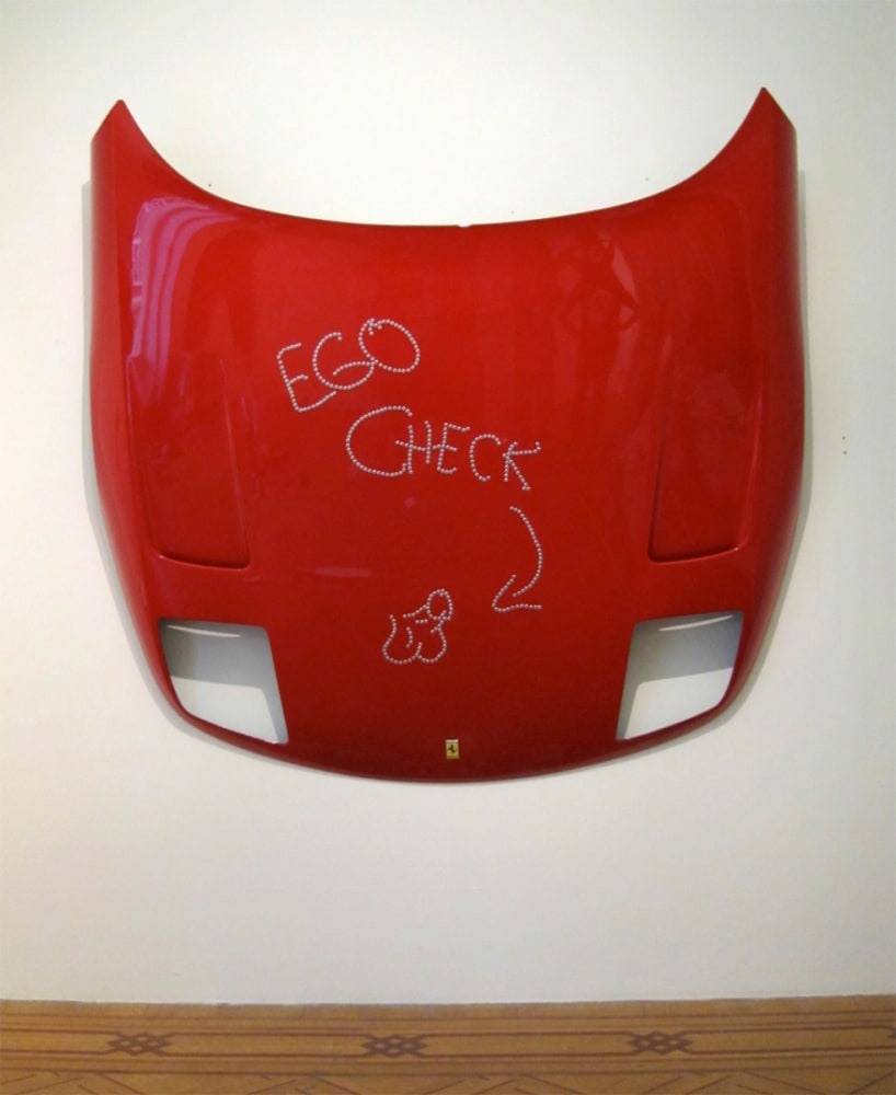 Frances GOODMAN, Ego check, 2012