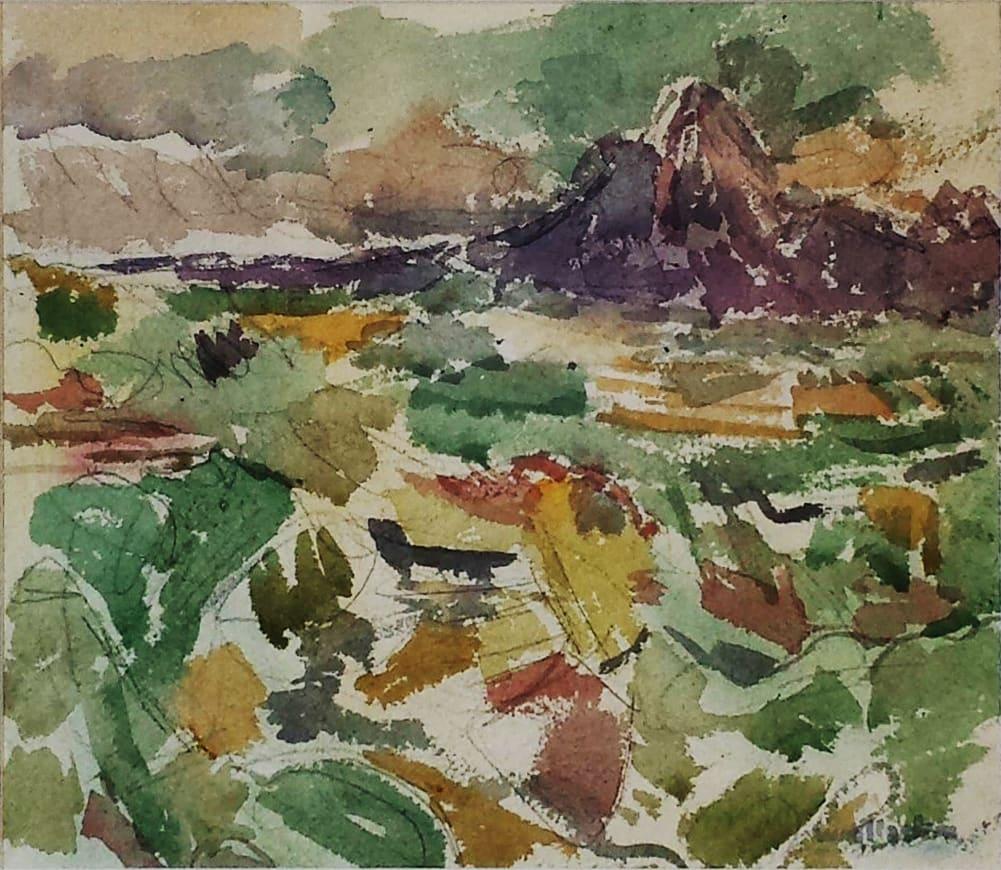 Mt Egmont from Huinga