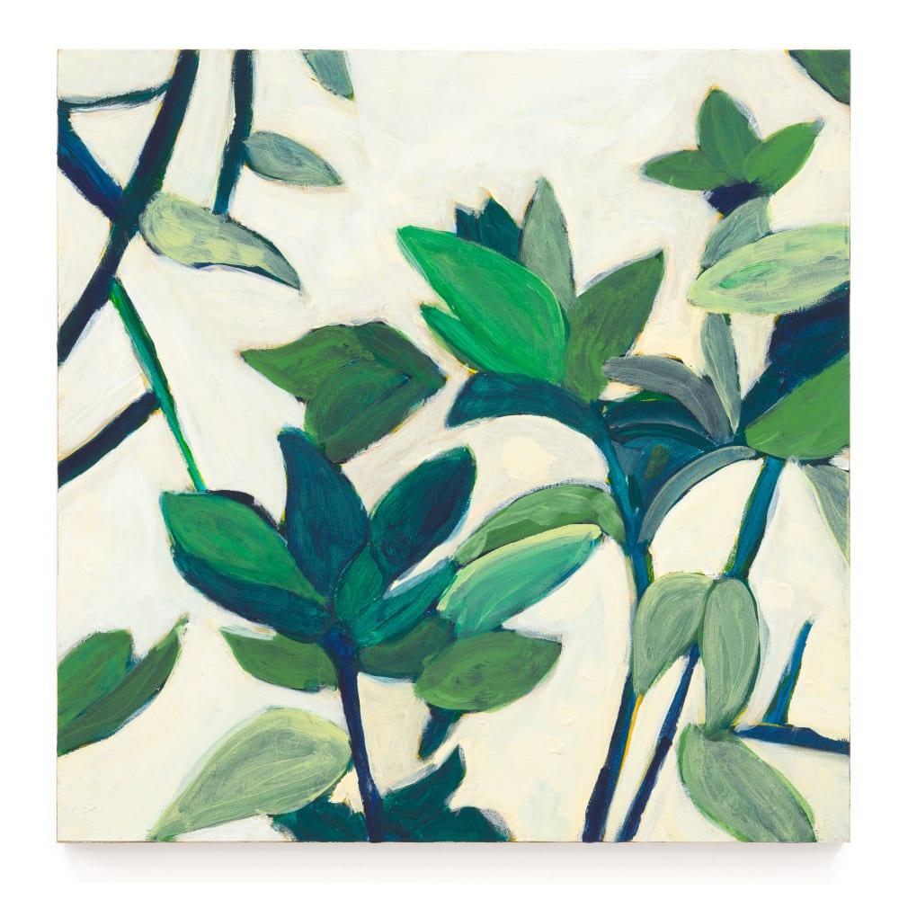 Negin Dastgheib, Spinach, 2020