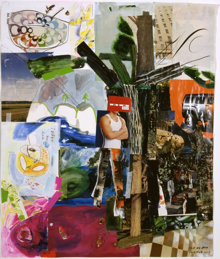 KOLK Douglas  Help me Nasa!, 2005