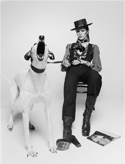 Terry O'Neill, David Bowie for Diamond Dog (view 2), 1974