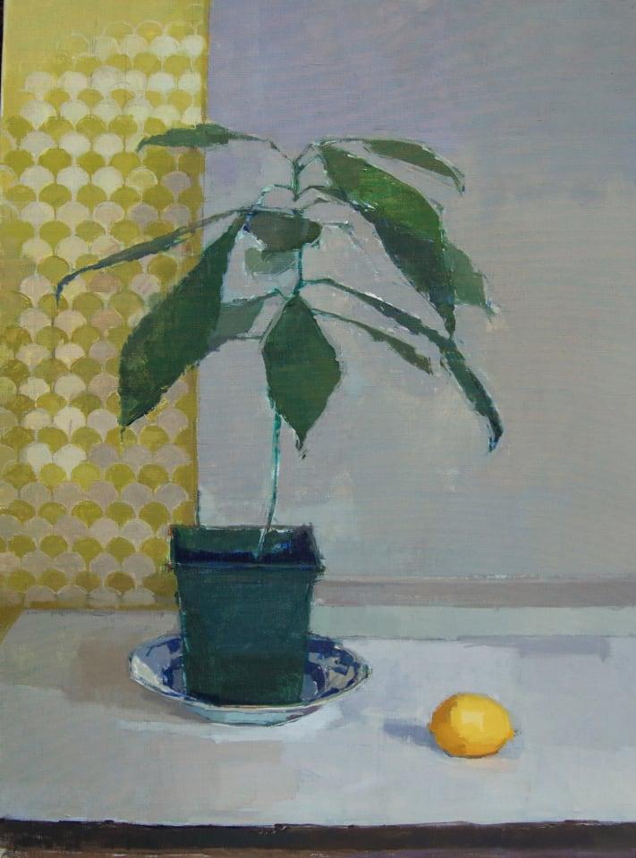 Sarah Spackman, Vicki's Avocado