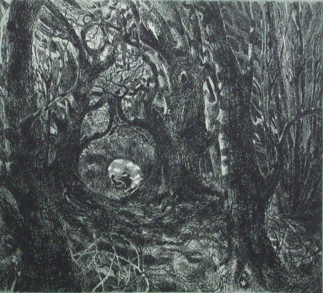 Flora McLachlan, In The Wood