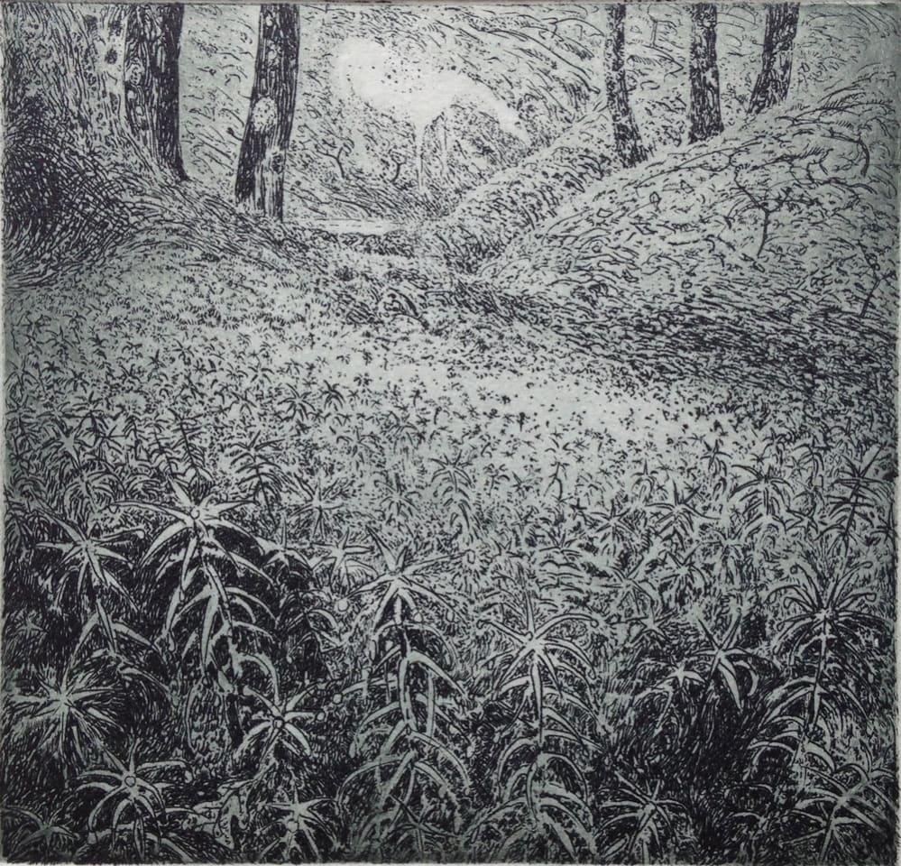 Flora McLachlan, Moss