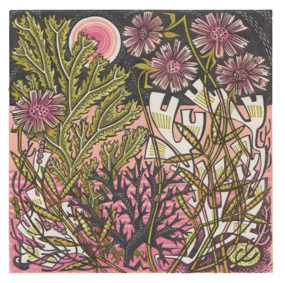 Angie Lewin, Sea Pinks