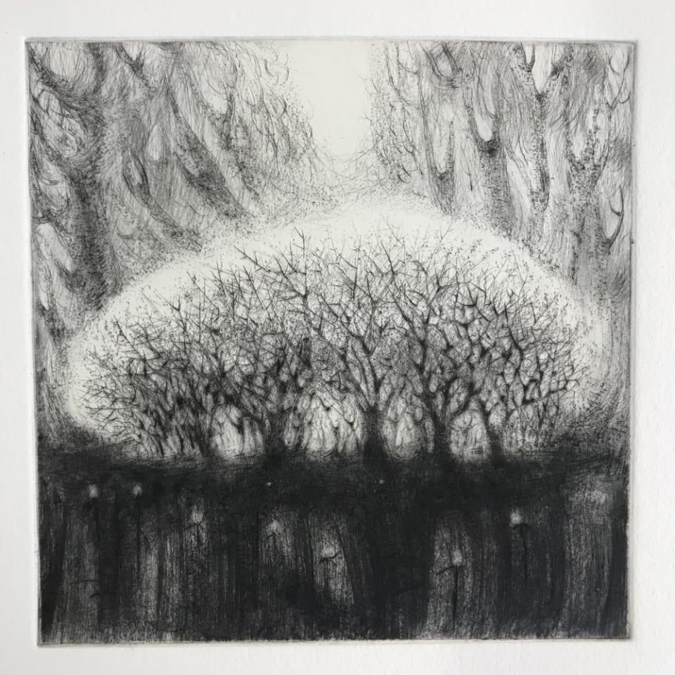 Flora McLachlan, Blackthorn, 2020