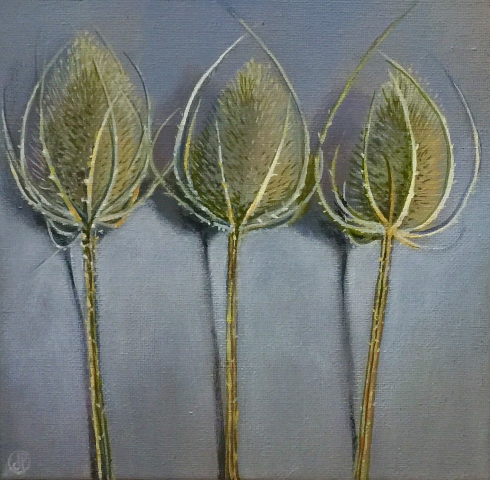 Joyce Pinch, Three Teasel Seed Heads