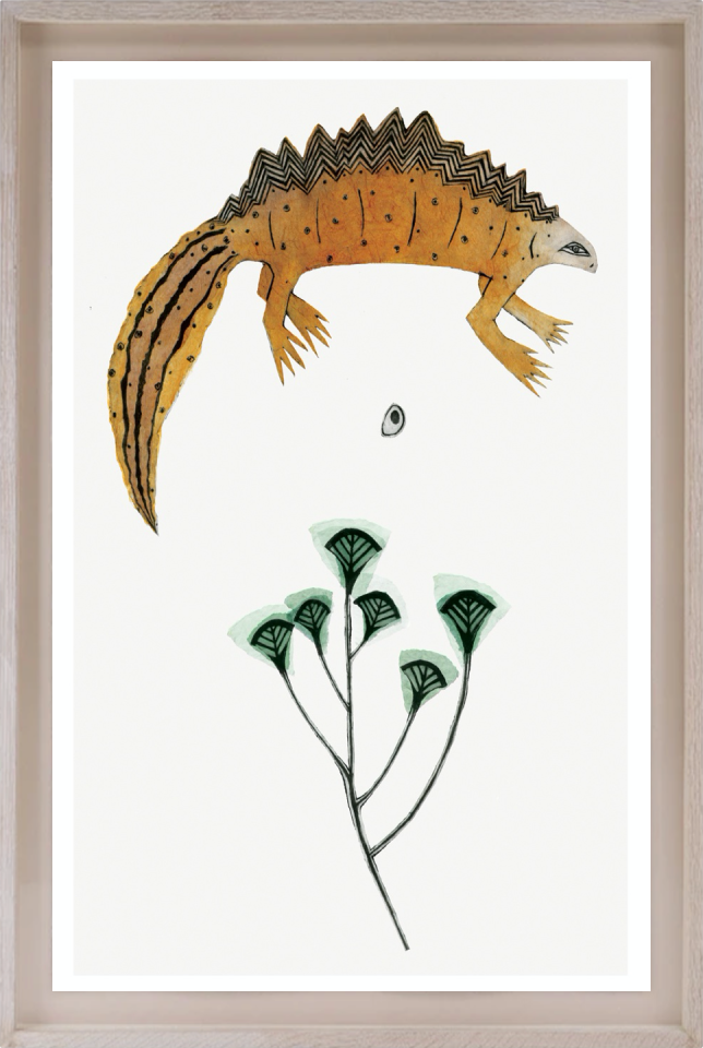 Beatrice Forshall, Great Crested Newt (Framed)
