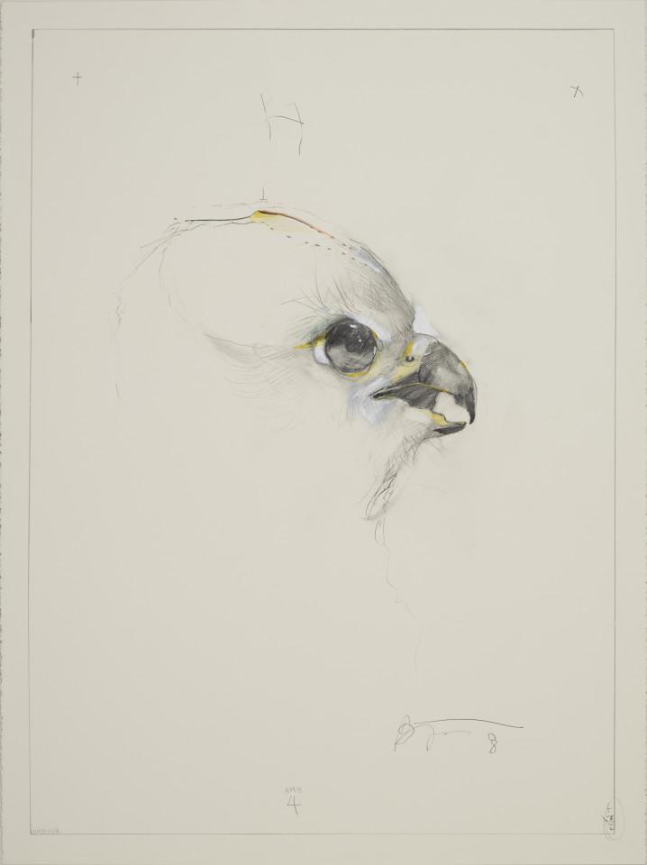 Rick Bartow, HMB 4, 2009