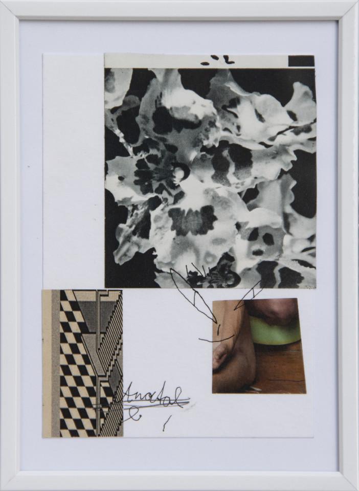 Nana Mandl, grey anatomy, 2017