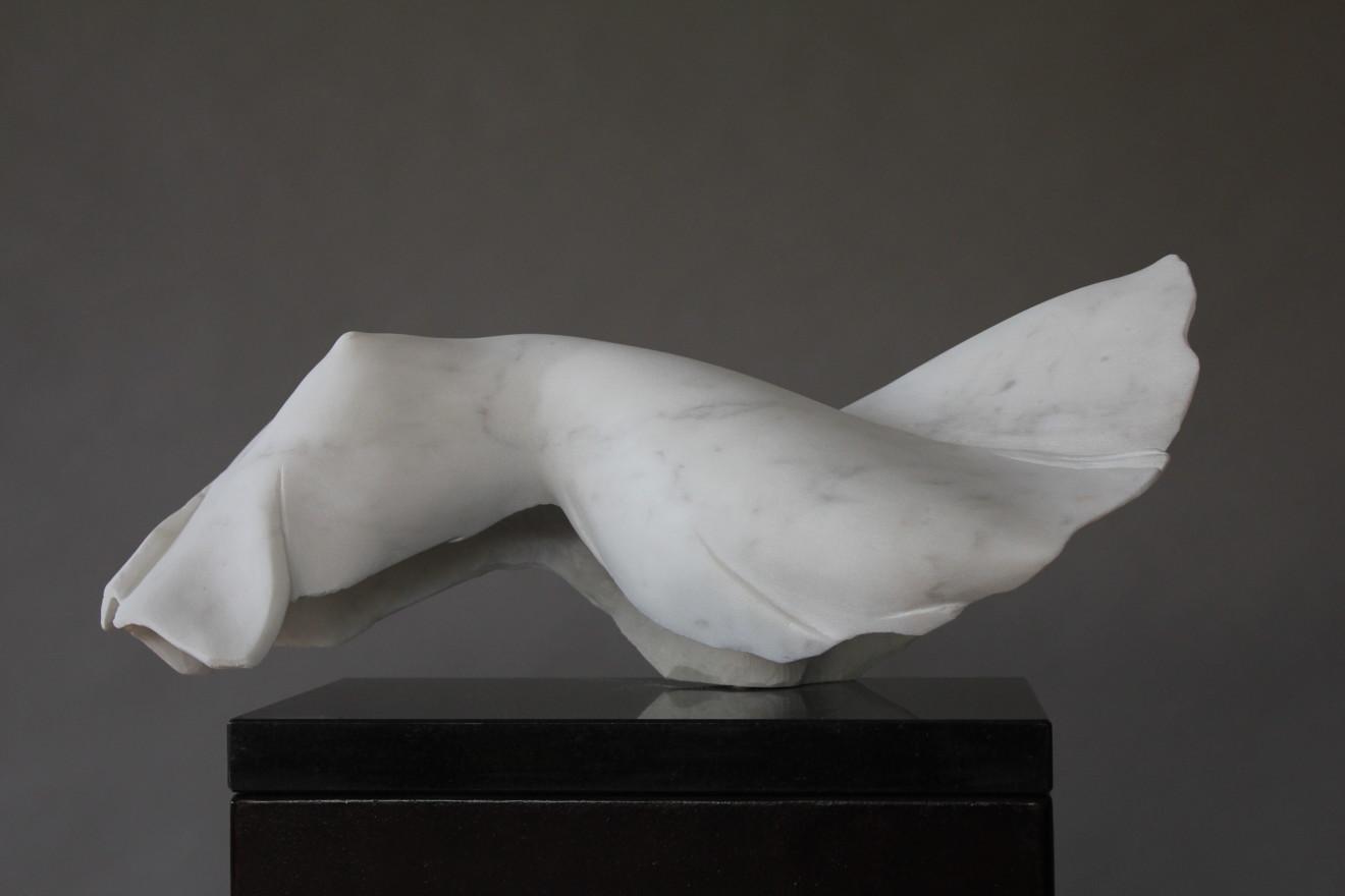 Rogério Timóteo, Reclining torso