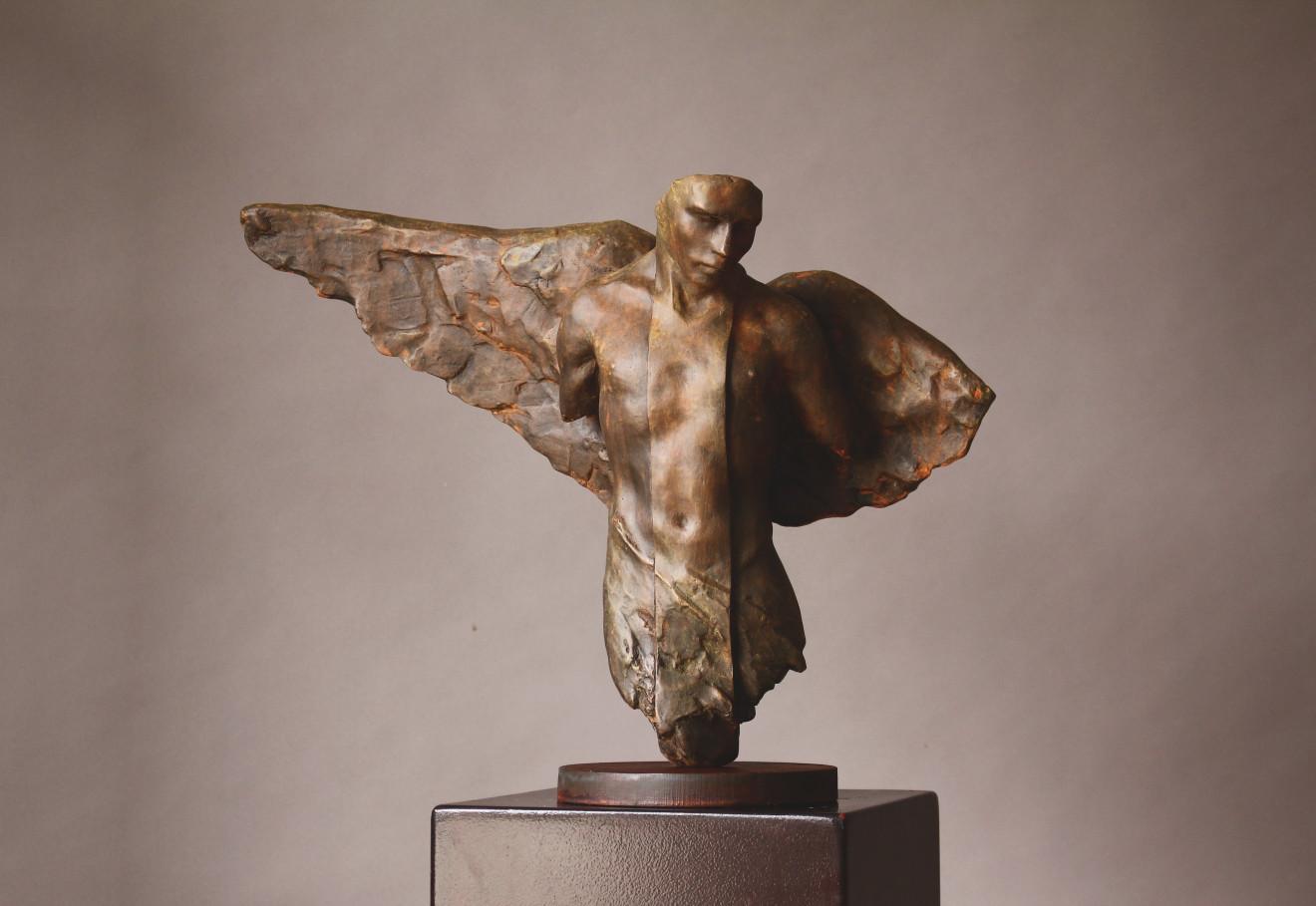 Rogério Timóteo, Winged Male