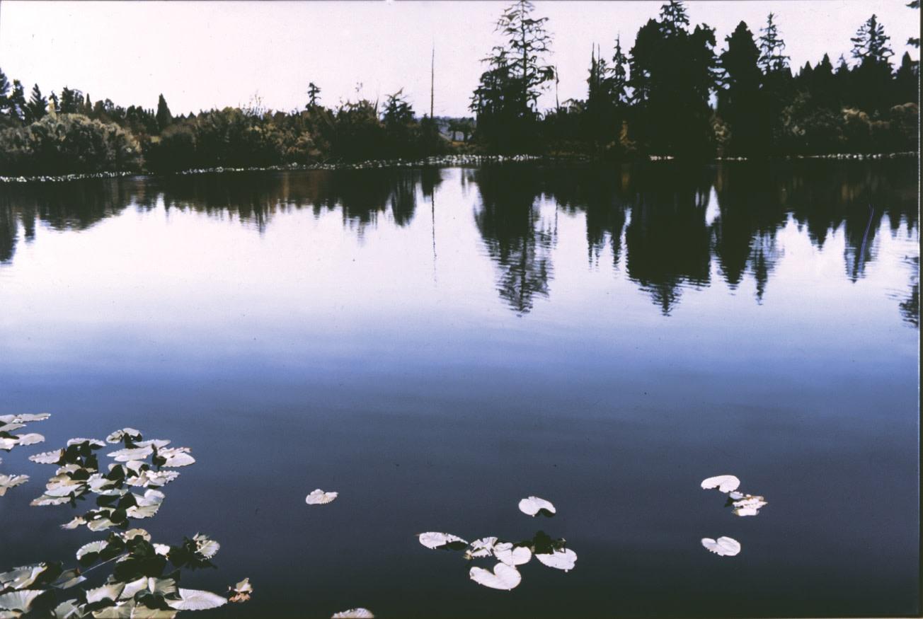 James Van Patten, Lake Carnegie
