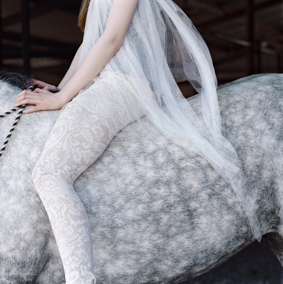 Laura Wilson, Dapple Grey Horse with Lace, 2010