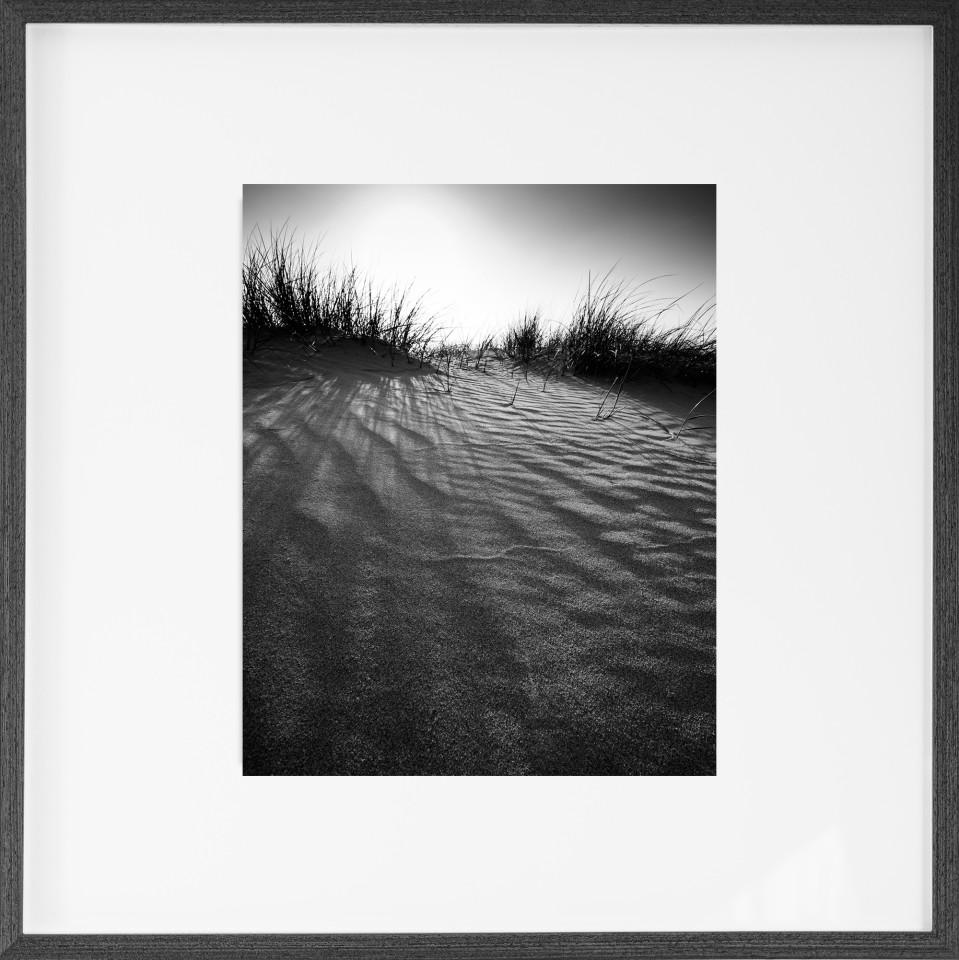 Nick Reader, Backlit Dunes