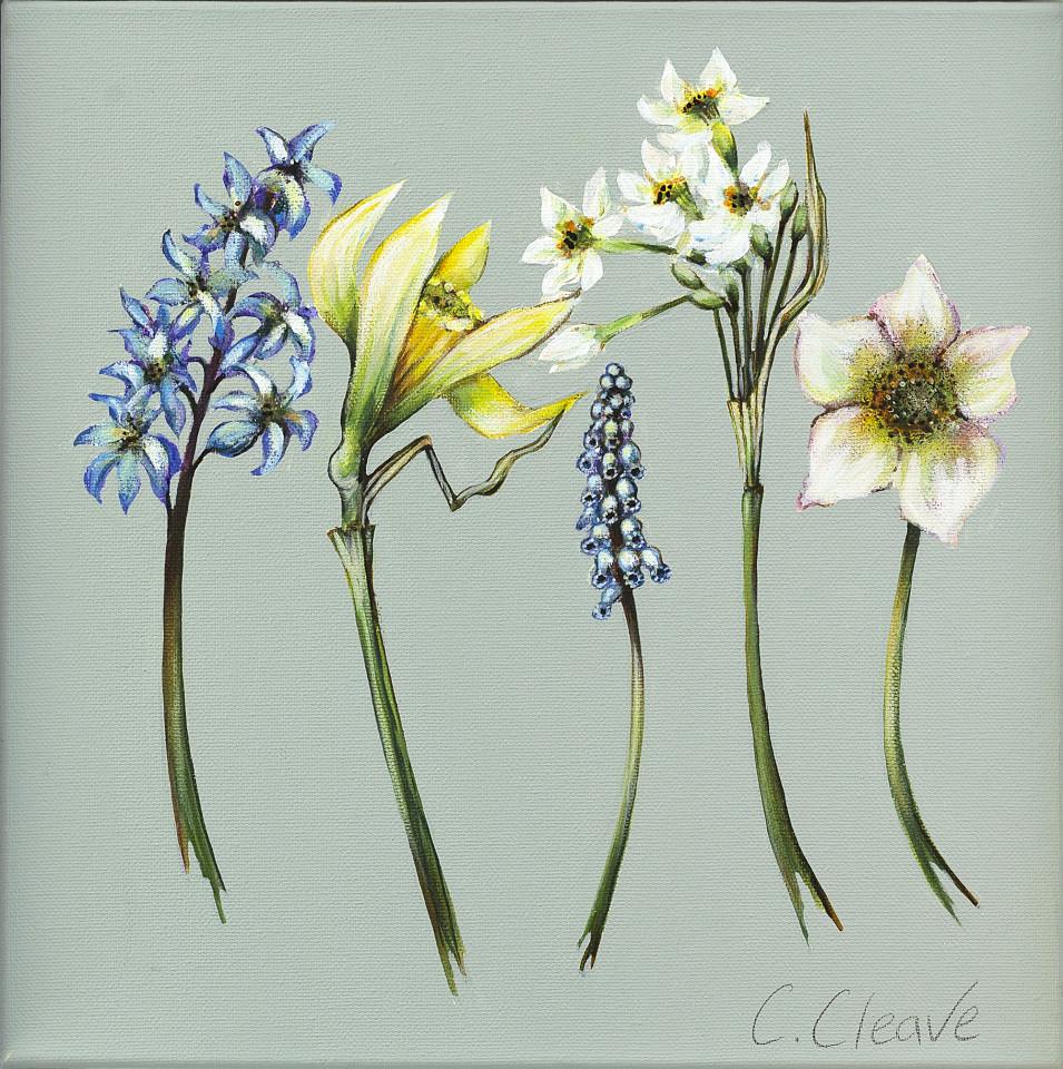 Caroline Cleave, Spring Flowers, 2020