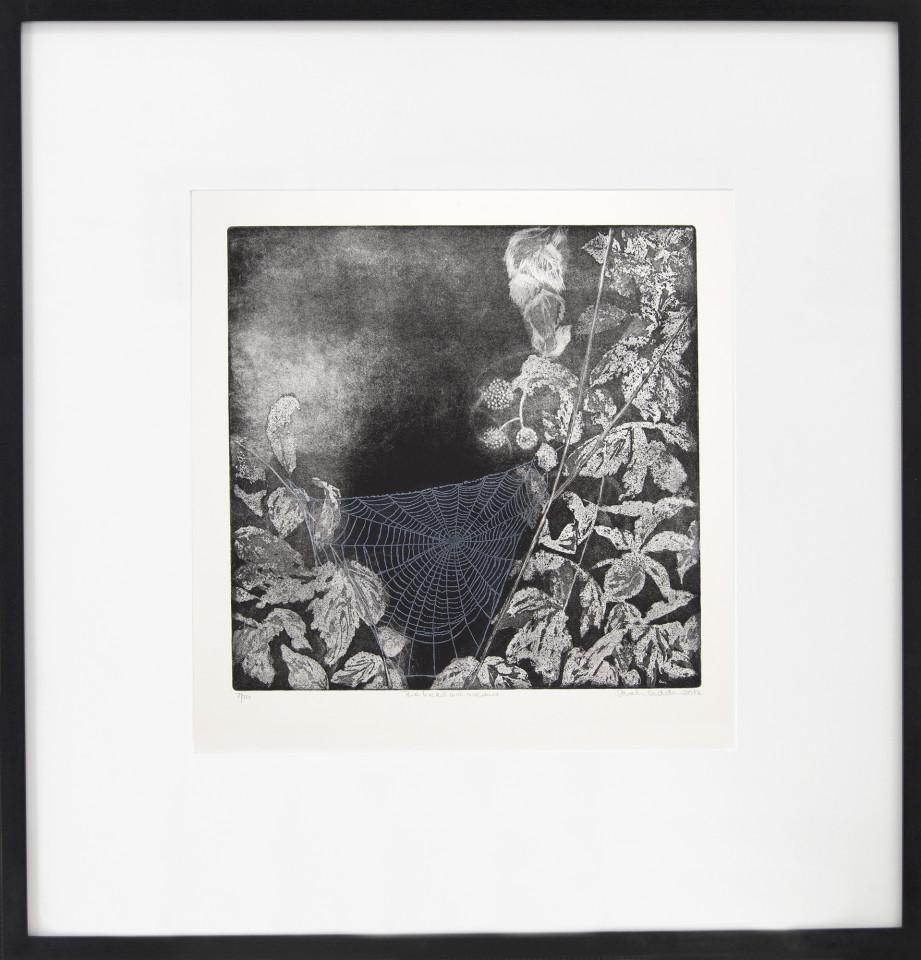 Sarah Seddon, Webs We Weave
