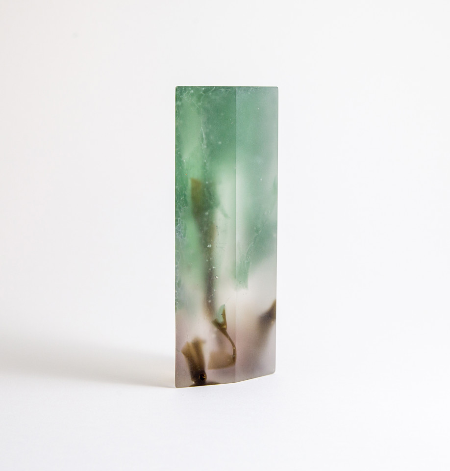 Jade Pinnell, Coastal Study #3