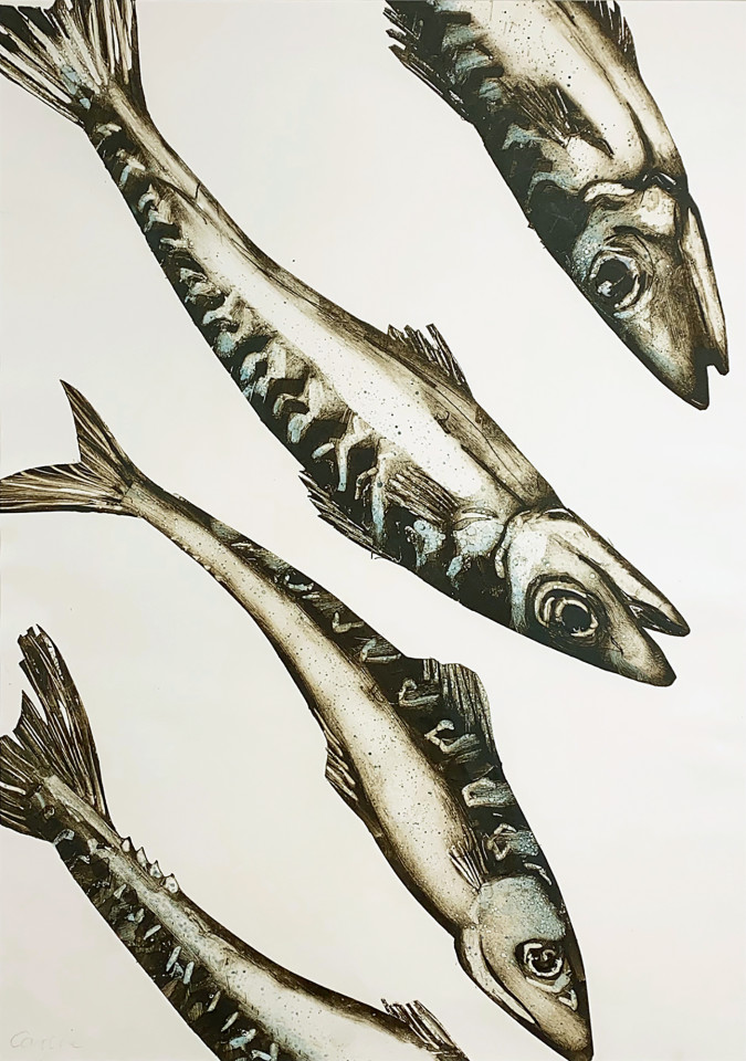 Caroline Cleave, Large Mackerel