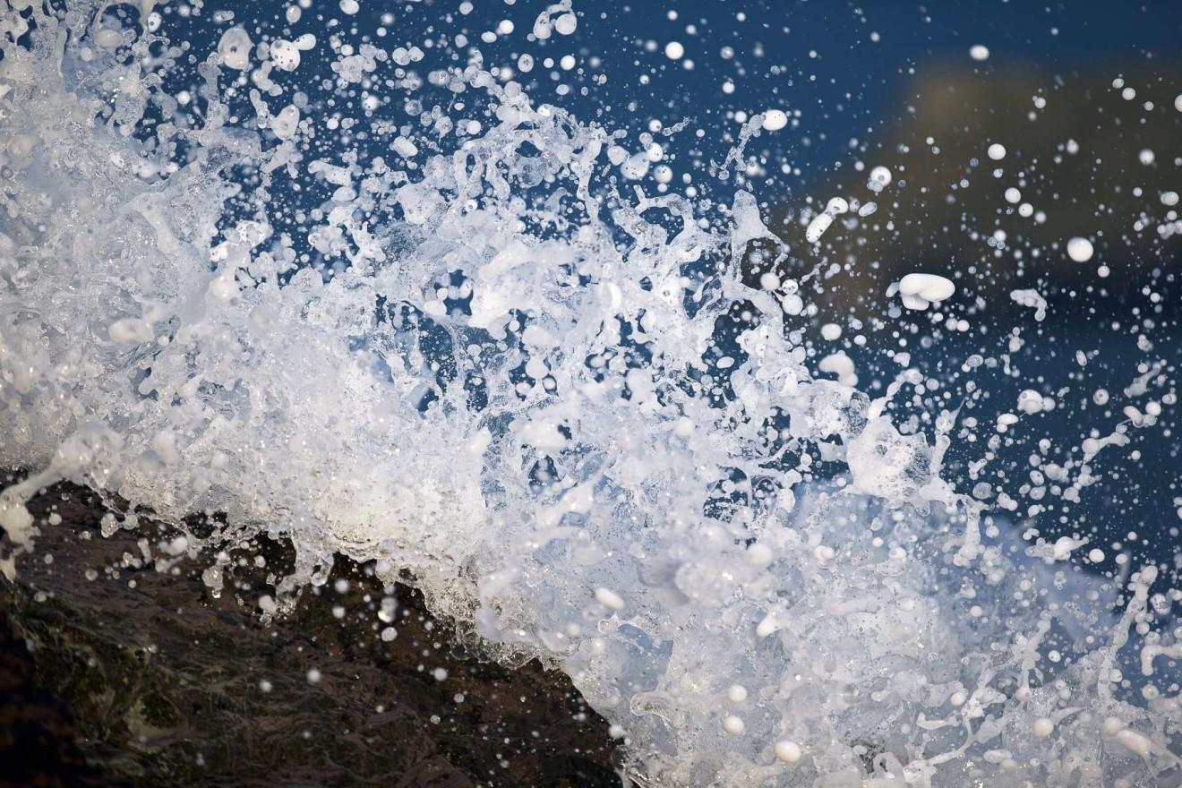 Nick Wapshott, Spray I