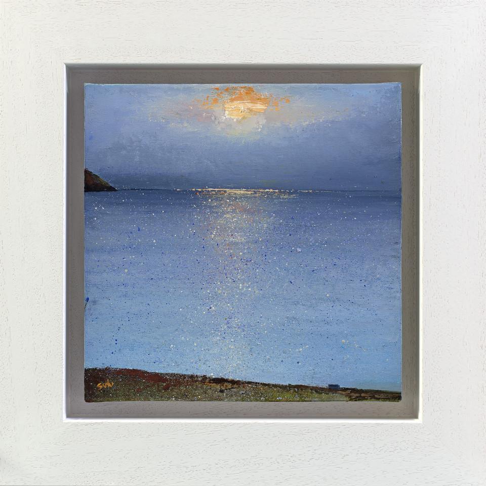 Suki Wapshott, Sunsplash