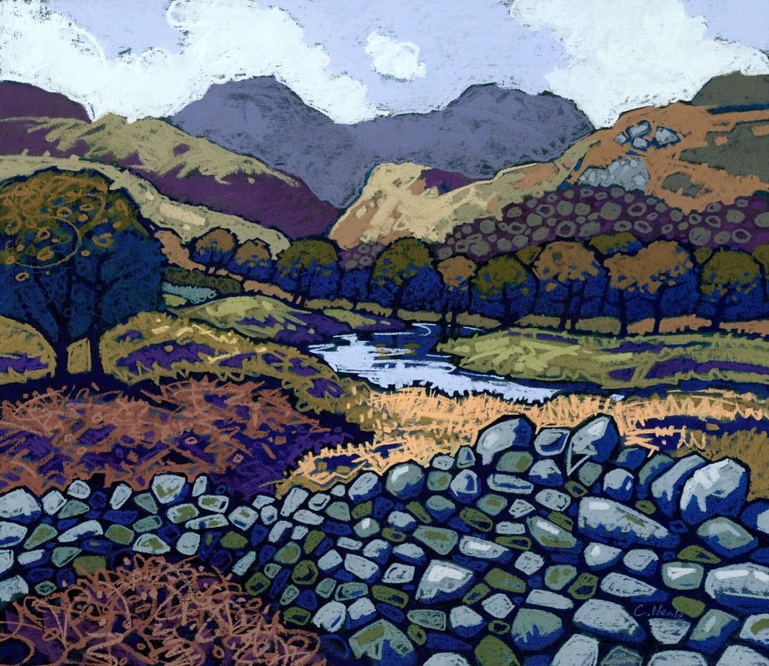 Chris Neale, Afon Glaslyn