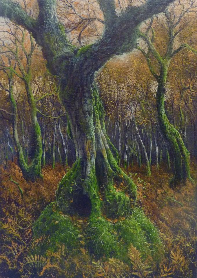 Gerald Dewsbury, Autumn Birch Bole
