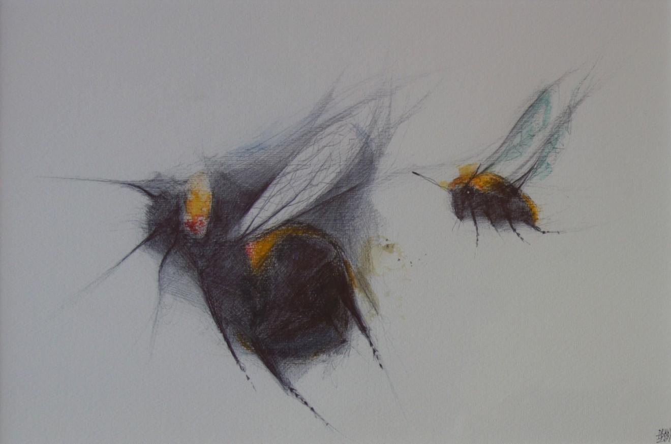 Dewi Tudur, Dau Gacwn / Two Bees