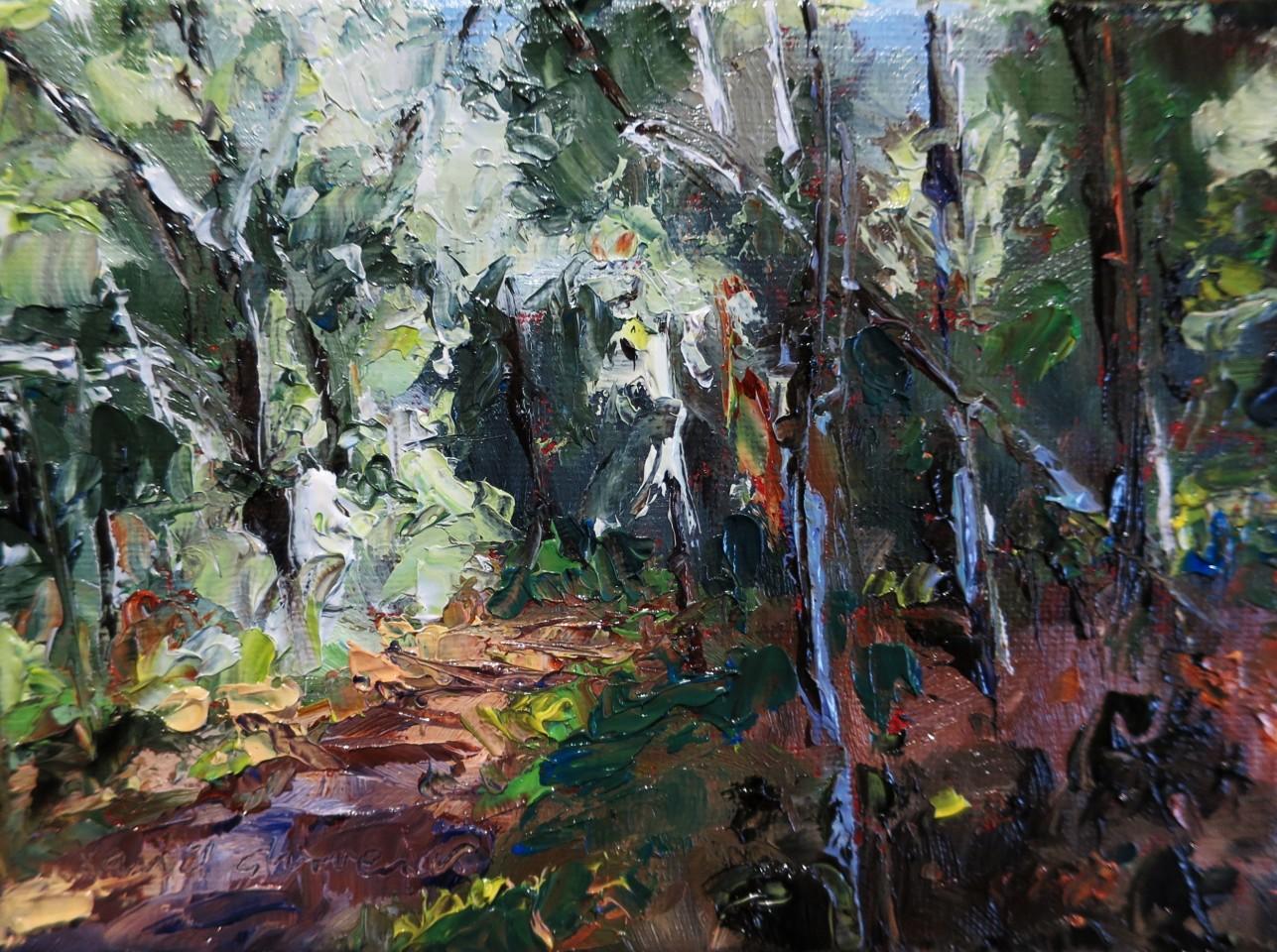 David Grosvenor, Woodland Walk, Tan y Bwlch II