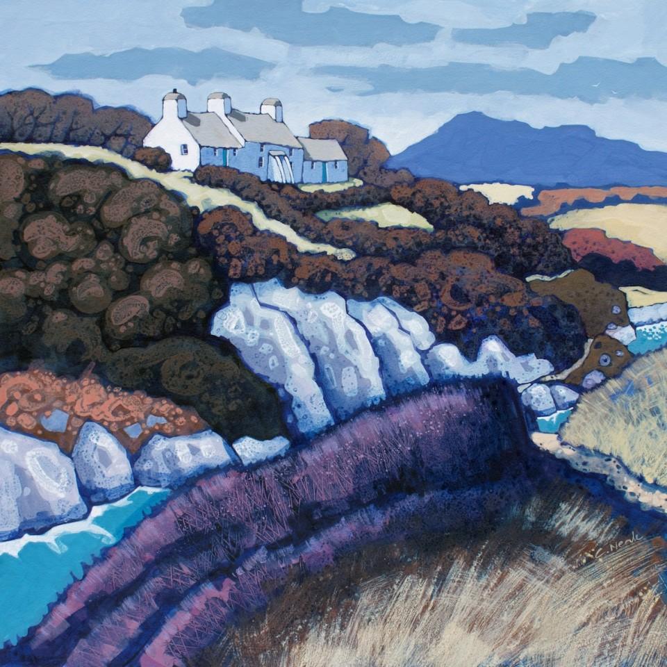 Chris Neale, Porthclais