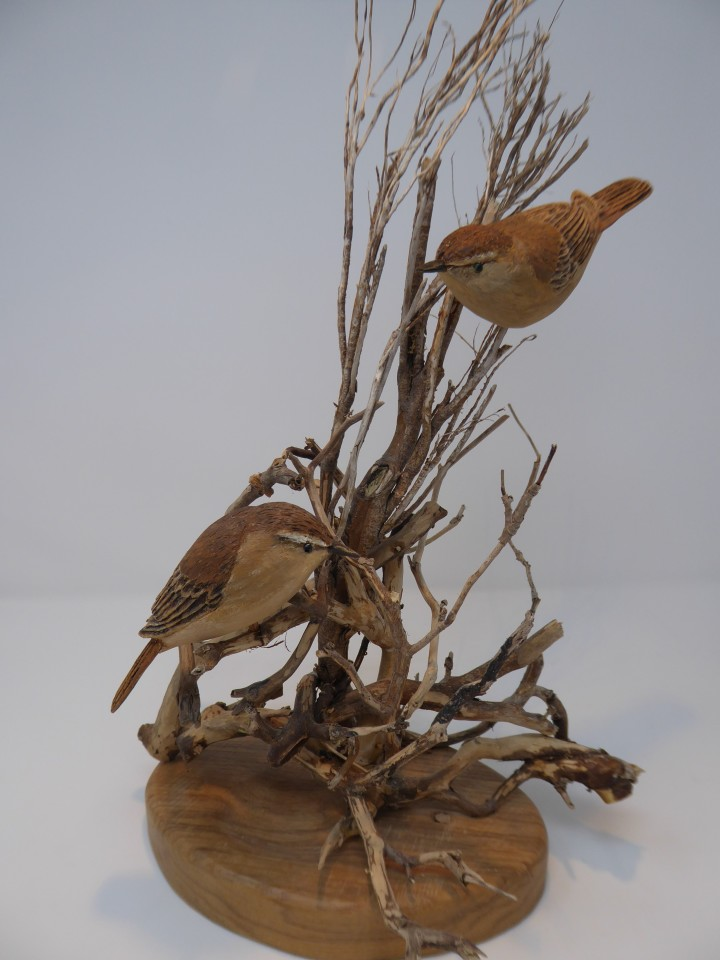 John & Marilyn Davies, Sedge Warblers