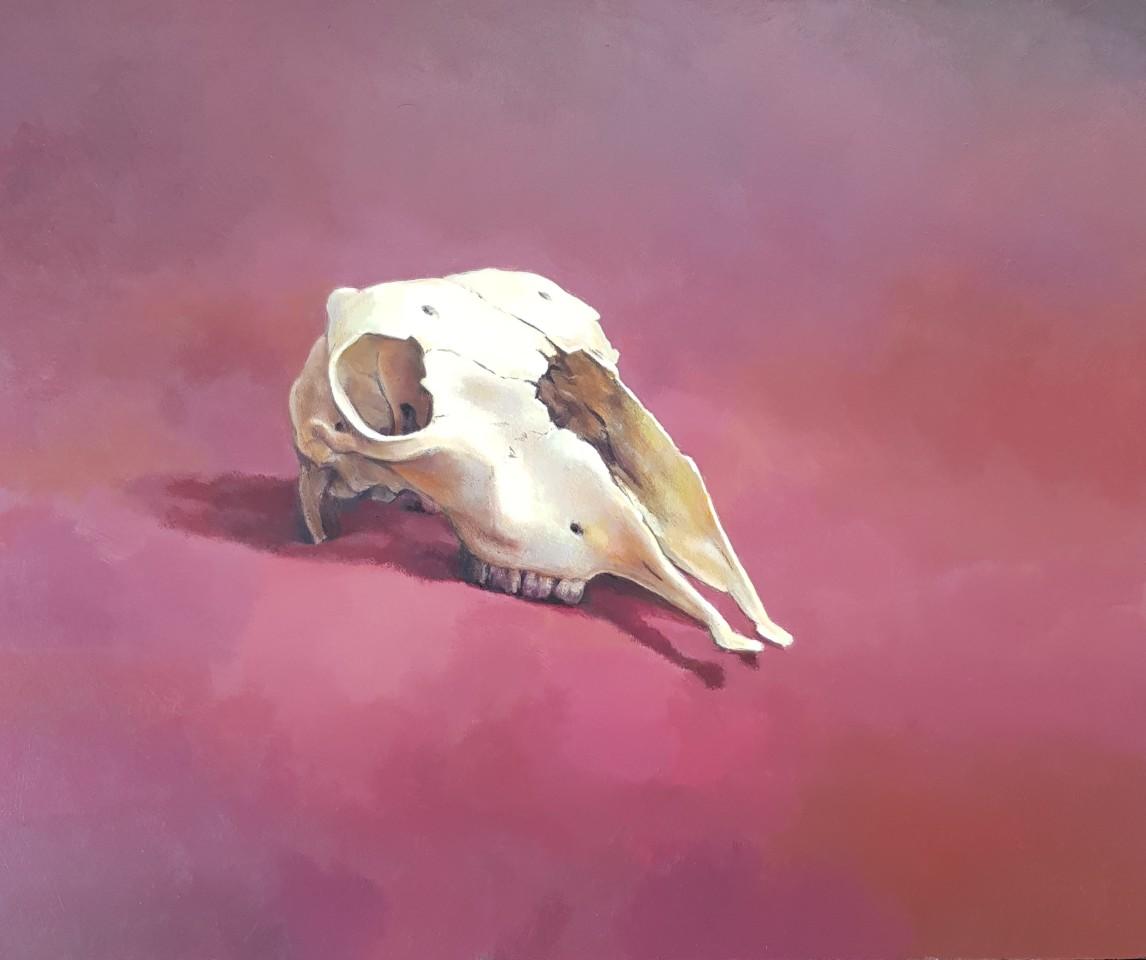 James Guy Eccleston, Skull on Velvet