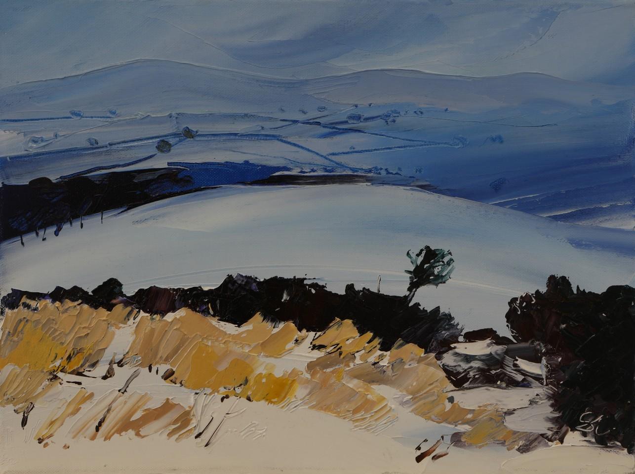 Sarah Carvell, Drifting Snow, Offas Dyke