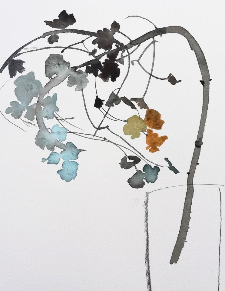 Susan Kane, Dried Euphorbia