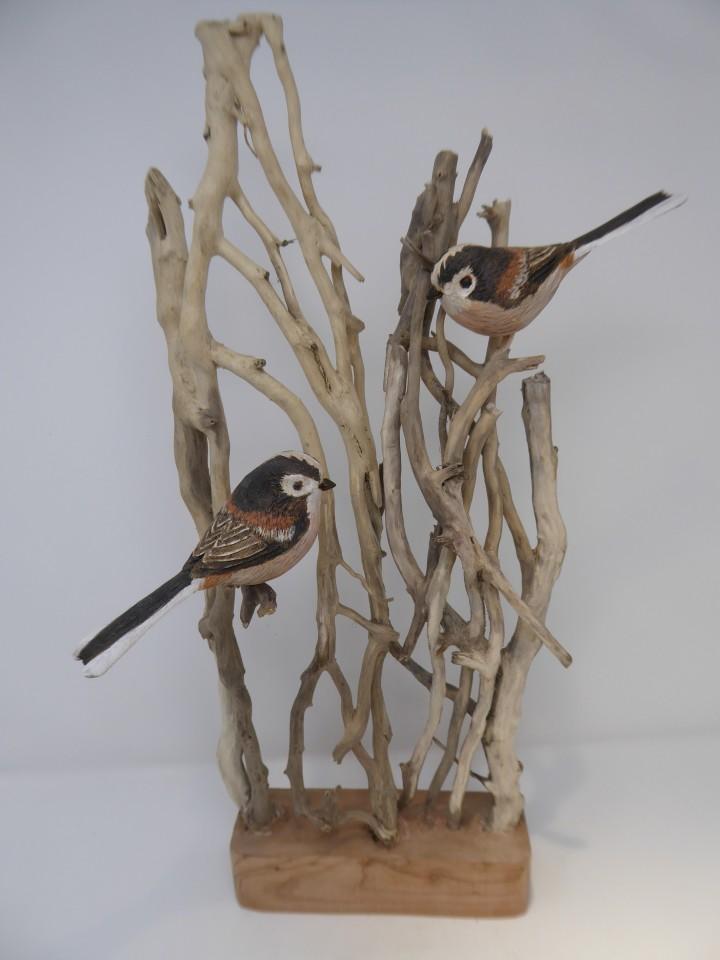 John & Marilyn Davies, Long-tailed Tits