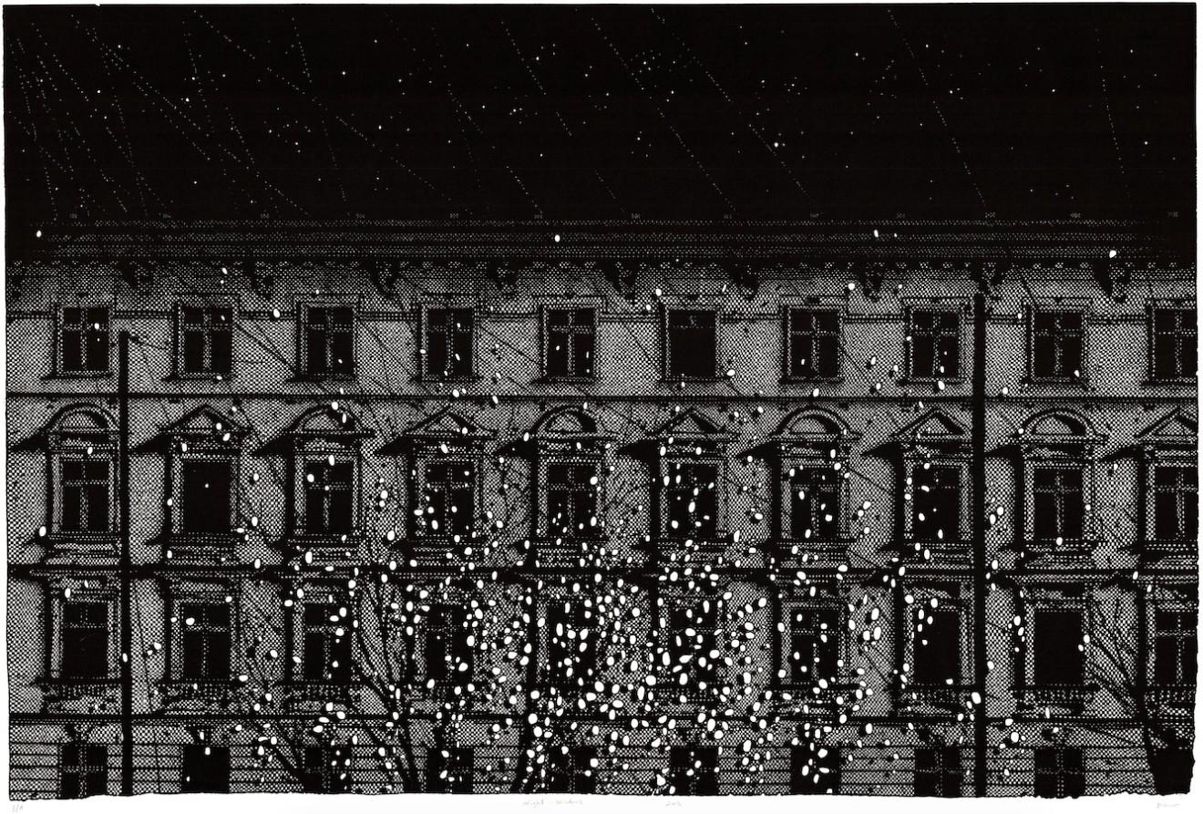 Nicolas Poignon, Nuit et fenêtres, 2013