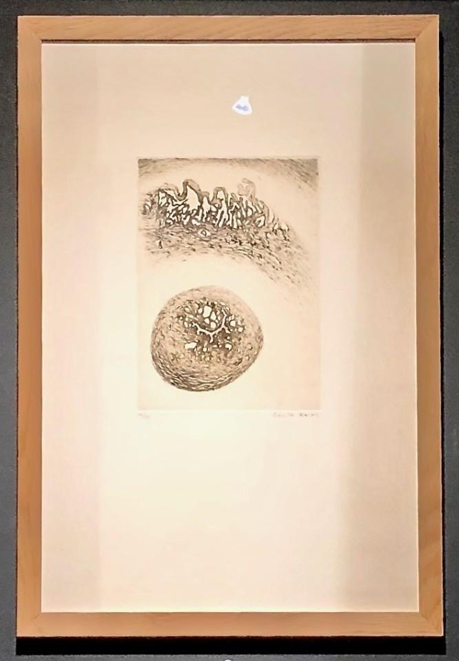 Cécile Reims, Paysages anatomiques - gravure #20, 1995-2000, édition ultérieure