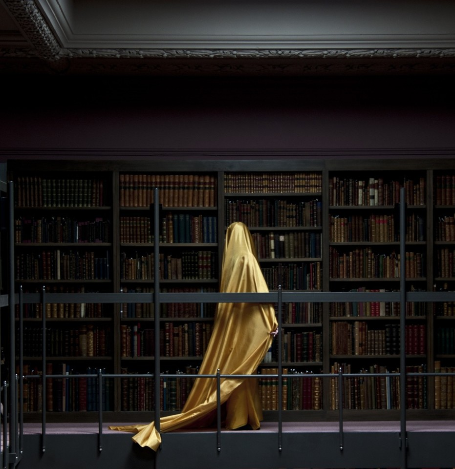 Güler Ates, Wing of Yellow, 2013