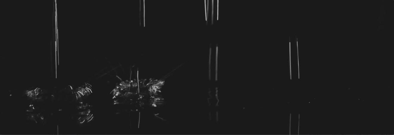 Heart of Silence, 2015