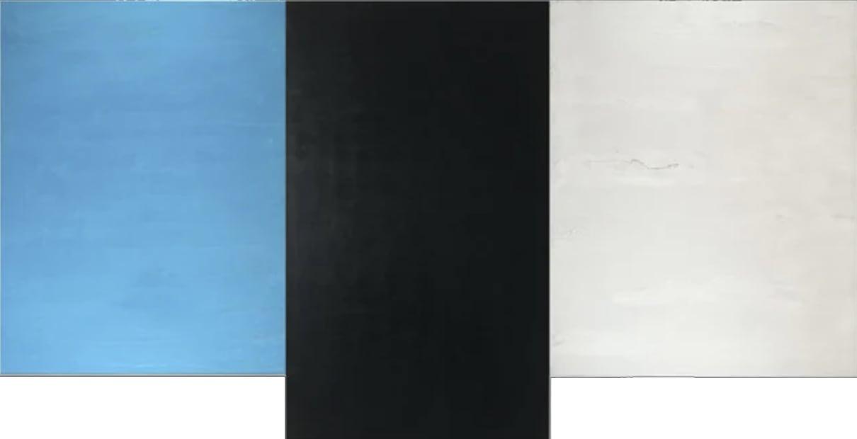 Wings Triptych, 2021