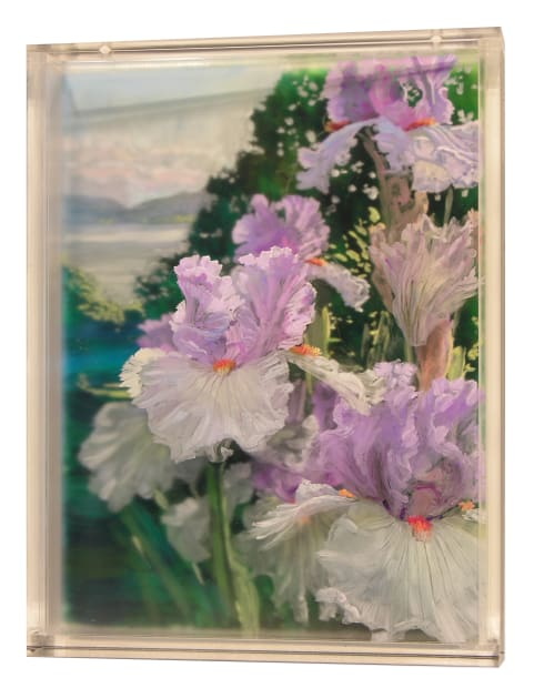 Irises, 2 Evenings, 2018