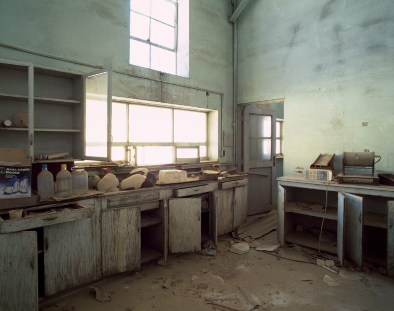 Wrecked Lab, Yerington NV, No 2, 2011